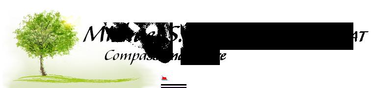 Michael S. Lang Logo
